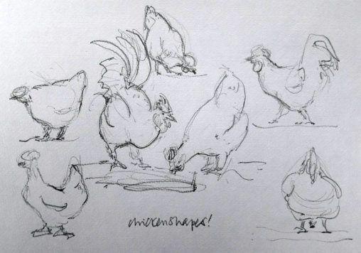 Chickens at Stillingfleet Lodge Gardens