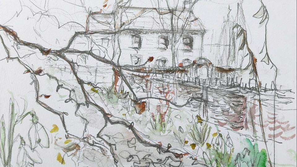 Snowdrop Walk at Stillingfleet Lodge Gardens