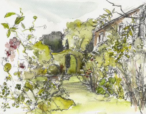 Front garden in the sunshine