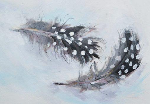 Small Guinea Fowl feathers