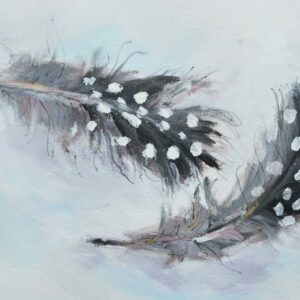 Small Guinea Fowl feathers