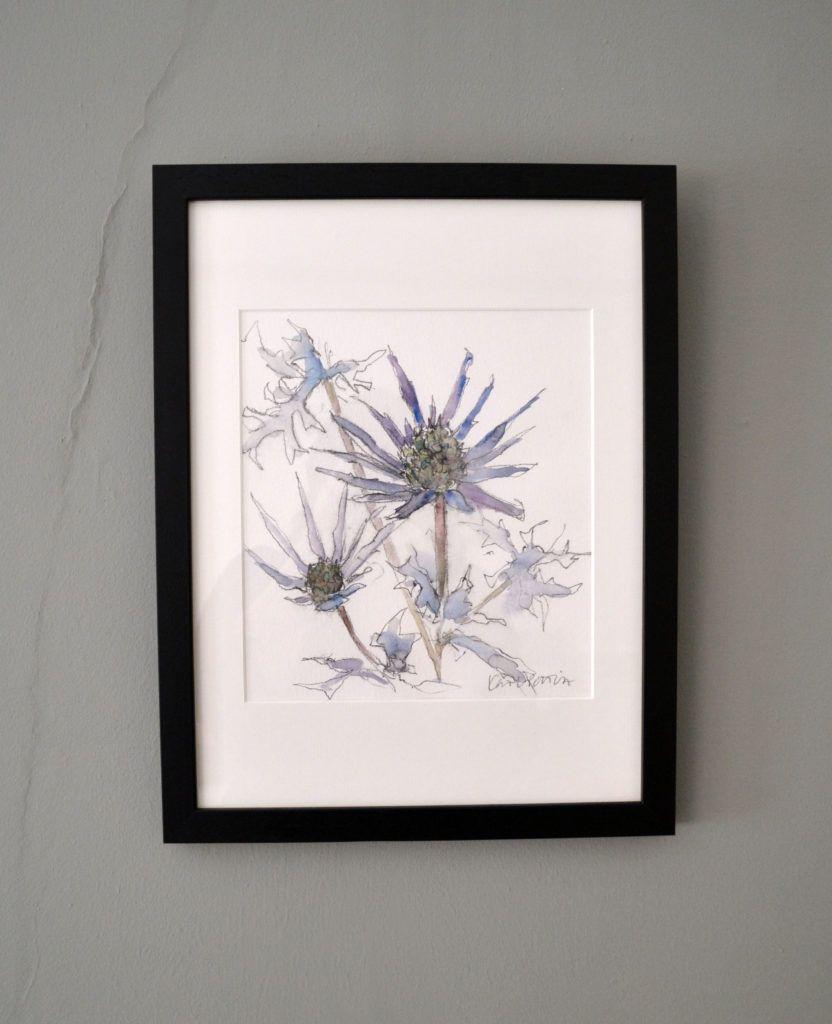 Blue Eryngiums. Original graphite and watercolour on acid-free Bockingford paper