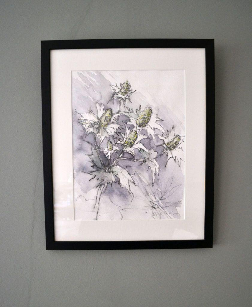 Eryngiums. Original graphite and watercolour on acid-free Bockingford paper