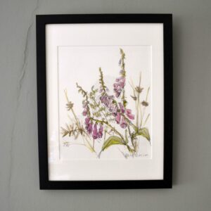 Foxgloves, bracken, rushes and thorns