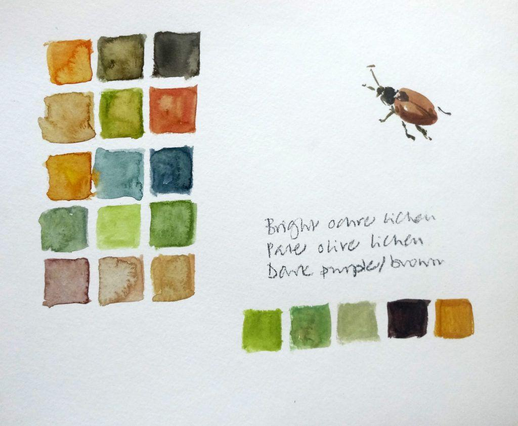 Ynys Gifftan colours and beetle (a lovely copper-coloured beetle kept landing on my paper, so he was imortalised!).