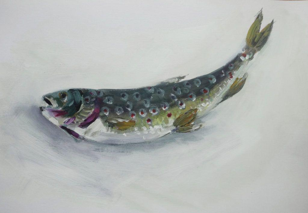 Trout! Study in acrylic on paper.