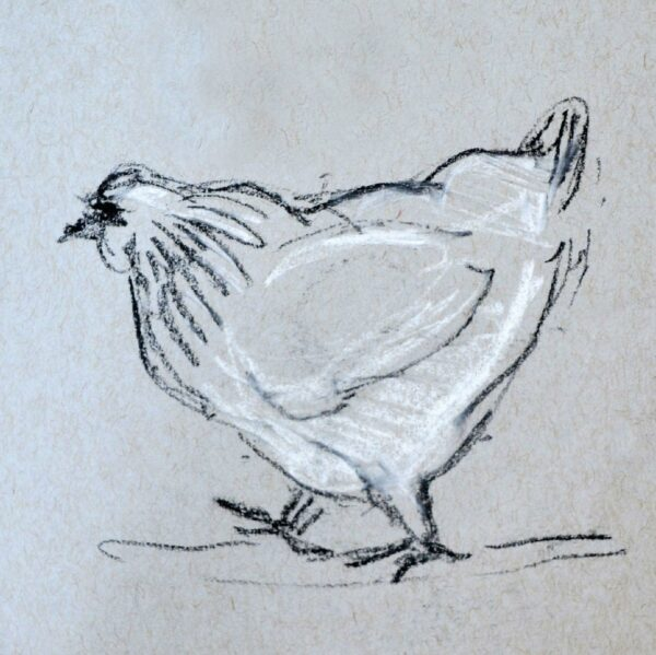 Chicken with Attitude Giclee print