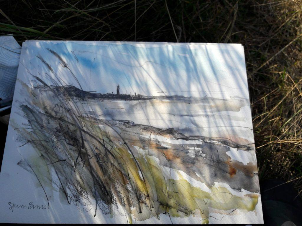 Shadows from the dune grasses dance on my sketchbook