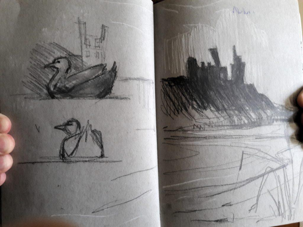 Ducks at Low Newton Pool and a silhouette of Dunstanburgh Castle in my little pocket sketch book.