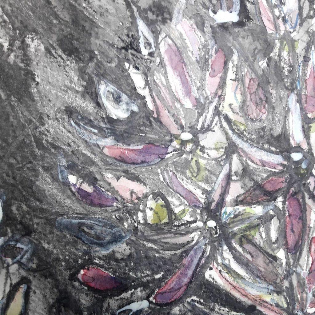 Allium study in watercolour, graphite and gouache – detail