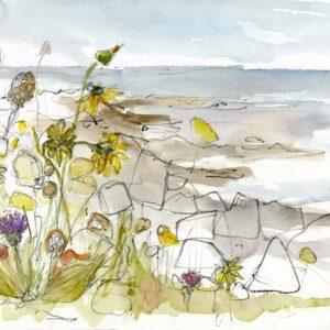 Coastal Flower Study