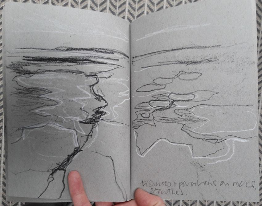 Lines and fissures at Thornwick Bay
