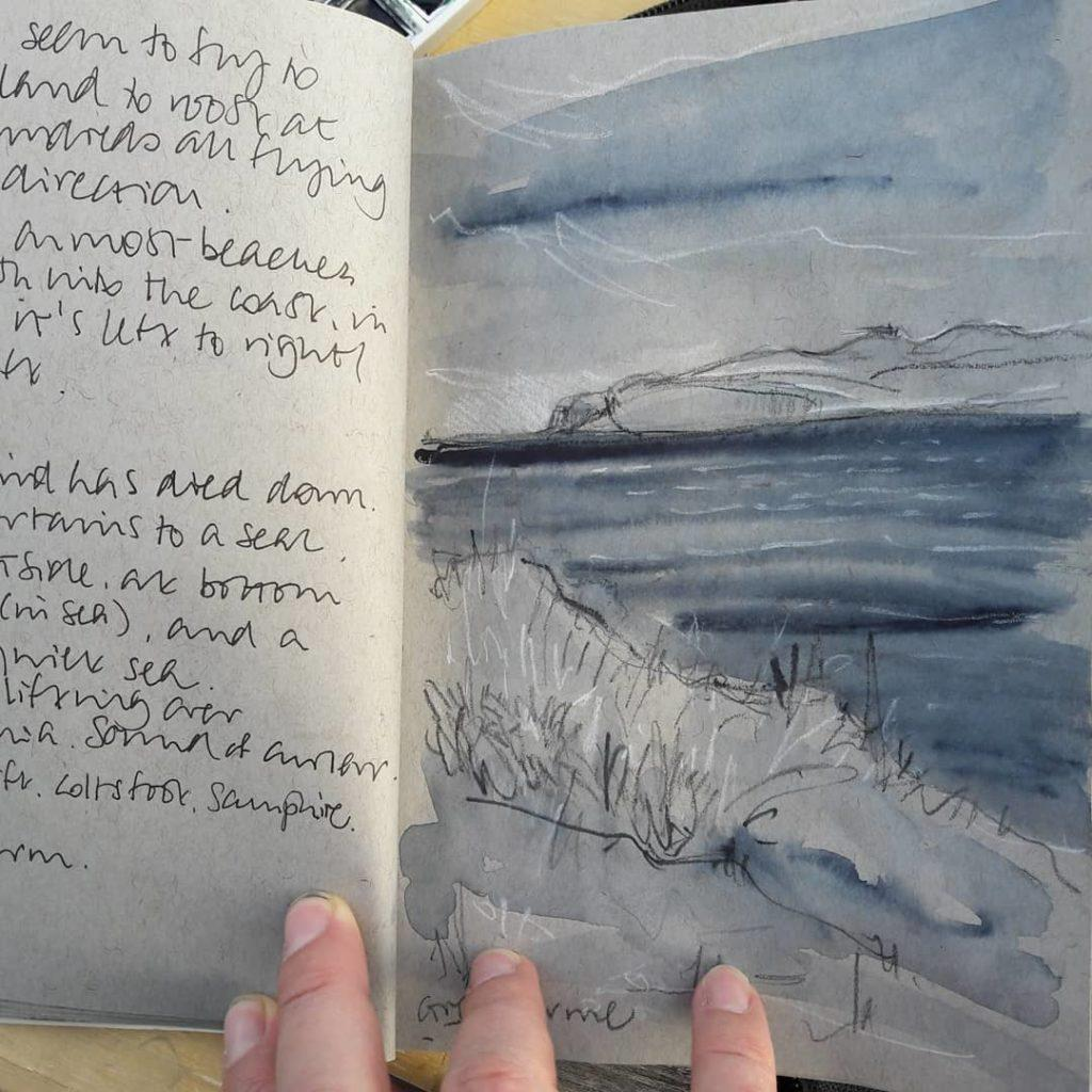 Sketches and field notes